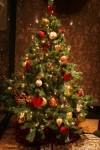 newotani-christmas05
