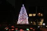 newotani-christmas11